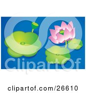 Clipart Illustration Of A Pink Lotus Flower And Bud Floating With Lilypads On A Blue Pond by NoahsKnight