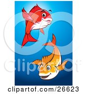 Poster, Art Print Of Pair Of Happy Red And Orange Fish Swimming In A Blue Pond