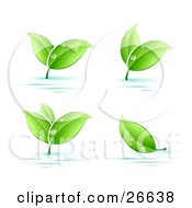 Clipart Illustration Of Four Sprigs Of Leaves Wet With Dew Drops Over A Blue And White Background