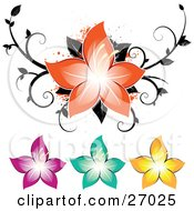 Clipart Illustration Of A Beautiful Orange Flower Over A Grunge Black Scroll And Paint Splatters Also Including Pink Green And Yellow Flowers