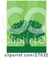 Clipart Illustration Of A Green Silhouetted Maple Tree Over A Bursting Green Background by Maria Bell