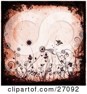 Clipart Illustration Of A Pink Grunge Background Bordered By Black Grunge And Silhouetted Maroon Flowers