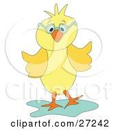 Cute Yellow Chick Wearing Green Glasses