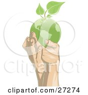 Pair Of Gentle Human Hands Supporting A Green Planet Earth With Green Leaves Sprouting From The Top Of The Globe