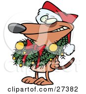 Brown Puppy Dog Wearing A Santa Hat And Grinning Decked Out In A Christmas Wreath Which Is Hanging Around His Neck