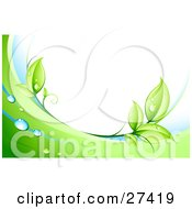 Clipart Illustration Of Green Leaves Dew And Green And White Waves Bordering A White Background by beboy