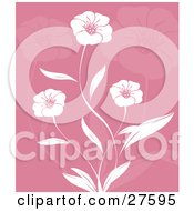Three Beautiful White Flowers And Leaves Over A Pink Background With Faded Flowers