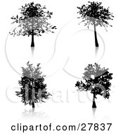 Clipart Illustration Of A Set Of Four Silhouetted Trees Some With More Branches And Foliage Than Others