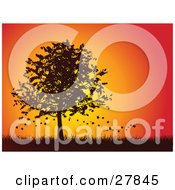 Clipart Illustration Of Autumn Leaves Falling Off Of A Silhouetted Maple Tree In A Grassy Landscape Against An Orange And Red Sunset