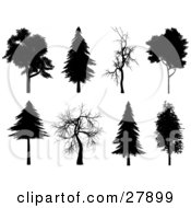 Clipart Illustration Of A Set Of Eight Silhouetted Trees In Black And White