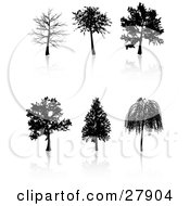 Clipart Illustration Of A Set Of Six Black Silhouetted Trees Including A Weeping Willow