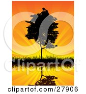 Clipart Illustration Of A Tall Tree On A Shore Reflecting On Still Waters Against An Orange Sunset Sky With Rays Of Light