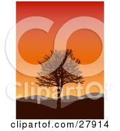 Silhouetted Bare Tree On A Hill With Rolling Hills In The Background Under A Gradient Sunset Sky