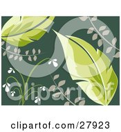 Clipart Illustration Of Two Big Green Leaves With White Flowers Over A Dark Green Background by KJ Pargeter