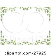 Clipart Illustration Of A White Background Framed With Green Ivy Vines And Leaves