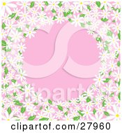 White Daisy Flowers With Green Leaves Circling Around A Pink Background