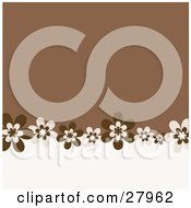 Clipart Illustration Of A White And Brown Background With A Lower Border Of Brown Daisy Flowers