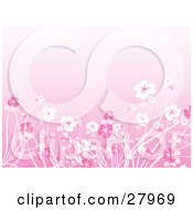 Clipart Illustration Of A Garden Of Pink And White Flowers Over A Pink Background
