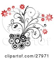 Flowering Plant With Red Blooms Growing From A Cluster Of Black And White Circles On A White Background