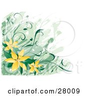 Clipart Illustration Of A White And Green Background With Yellow Lily Flowers And Green Leaves In The Lower Left Corner