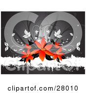Clipart Illustration Of A Cluster Of Red And Orange Lily Flowers With Black Leaves On Top Of A Grunge White Text Bar With A Gray Background And White And Gray Leaves