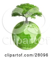 Clipart Illustration Of A Lush Green Tree Growing On Top Of The Green Earth With A Grassy Texture Over White