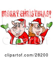 Clipart Illustration Of A Pig Couple In Santa Suits Holding Their Arms Up Under A Merry Christmas Greeting by LaffToon