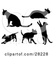 Clipart Illustration Of A Set Of Silhouetted Kitty Cats Sitting Laying Stretching Walking And Standing Up On Their Hind Legs by KJ Pargeter