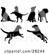 Clipart Illustration Of A Set Of Silhouetted Dogs Sitting Standing Running And Playing