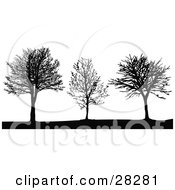 Clipart Illustration Of Three Black Silhouetted Bare Leafless Trees In Winter