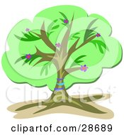 Clipart Illustration Of A Lush Green Tree With Blue Bands Around The Trunk And Pink And Purple Flowers by bpearth