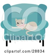 Adorable Beige Kitty Cat In A Pink Collar Resting On A Cushion Of A Blue Living Room Chair