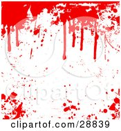 Red Blood Splatters Dripping Over A White Background With Spots Scattered