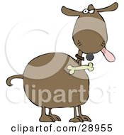 Clipart Illustration Of A Brown Dog Hanging His Tongue Out And Giving An Annoyed Look A Bone Hanging From His Collar