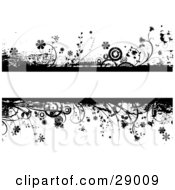 Blank Text Bar Framed With Black Flowers Plants Grunge And Circles Over A White Background
