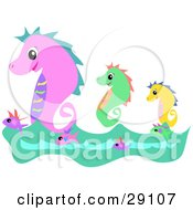 Clipart Illustration Of Three Pink Green And Yellow Seahorses Swimming On Top Of Waves With Fish by bpearth