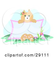 Clipart Illustration Of A Friendly Beige Kitty Cat Sitting By Flowers In Grass Holding A Blank Advertising Sign by bpearth