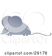 Clipart Illustration Of A Grinning Gray Mouse With A Long Skinny Tail
