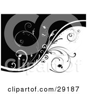 Clipart Illustration Of A Background Of Black And White Divided By Black And White Vines With Curly Stems
