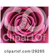 Clipart Illustration Of A Background Of A Beautiful Blooming Pink Rose With Soft Perfect Petals
