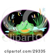 Friendly Green Frog Perched On A Log Near A Pond With Dragonflies And Plants At Night
