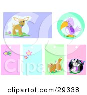 Clipart Illustration Of A Set Of Chihuahua Parrot Flower Cat And Rabbit Backgrounds And Blank Tags by bpearth