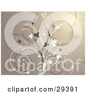 Clipart Illustration Of A Flourish Of Dark Brown Tan And White Grasses And Flowers On A Brown Background
