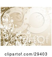 Clipart Illustration Of White And Brown Leafy Plants And Flowers On A Gradient Beige Background