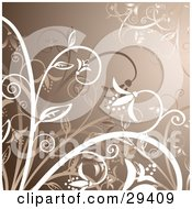 Clipart Illustration Of A Brown Background With White And Brown Flowers On Plants