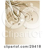 Clipart Illustration Of A Brown Background With A Flourish Of White And Brown Grasses In The Upper Left Corner