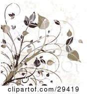 Clipart Illustration Of Dark Brown And Tan Grungy Leafy Plants On A Splattered Off White Background