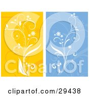 Clipart Illustration Of A Set Of White Flowering Plants Over Orange And Blue Backgrounds