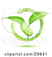 Clipart Illustration Of A Green Arrow Circling Around A Green Plant With Dew On The Leaves Sprouting From A Bean Or Seed