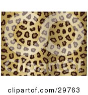Clipart Illustration Of A Background Of Brown And Tan Leopard Rosettes by KJ Pargeter